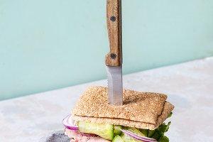 Big beef sandwich