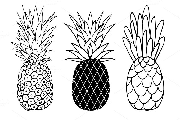 Vector Set Of Three Pineapple Fruit Styles Summer Tropical Object Collection Great For Travel Party Invitation Or Packaging