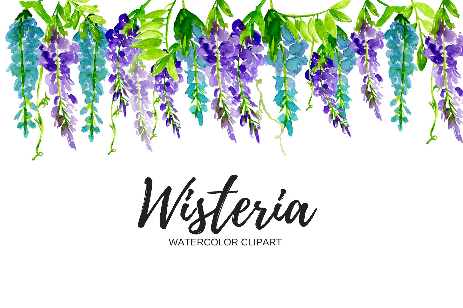be2b7a8b6d5 Watercolor Wisteria Clipart ~ Illustrations ~ Creative Market