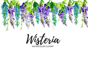 Watercolor Wisteria Clipart