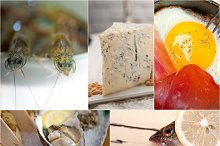 high protein diet collage 15.jpg