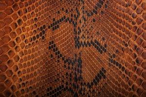 Brown snake skin pattern