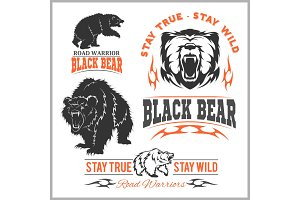 black bear for logo, sport team emblem, design elements and labels