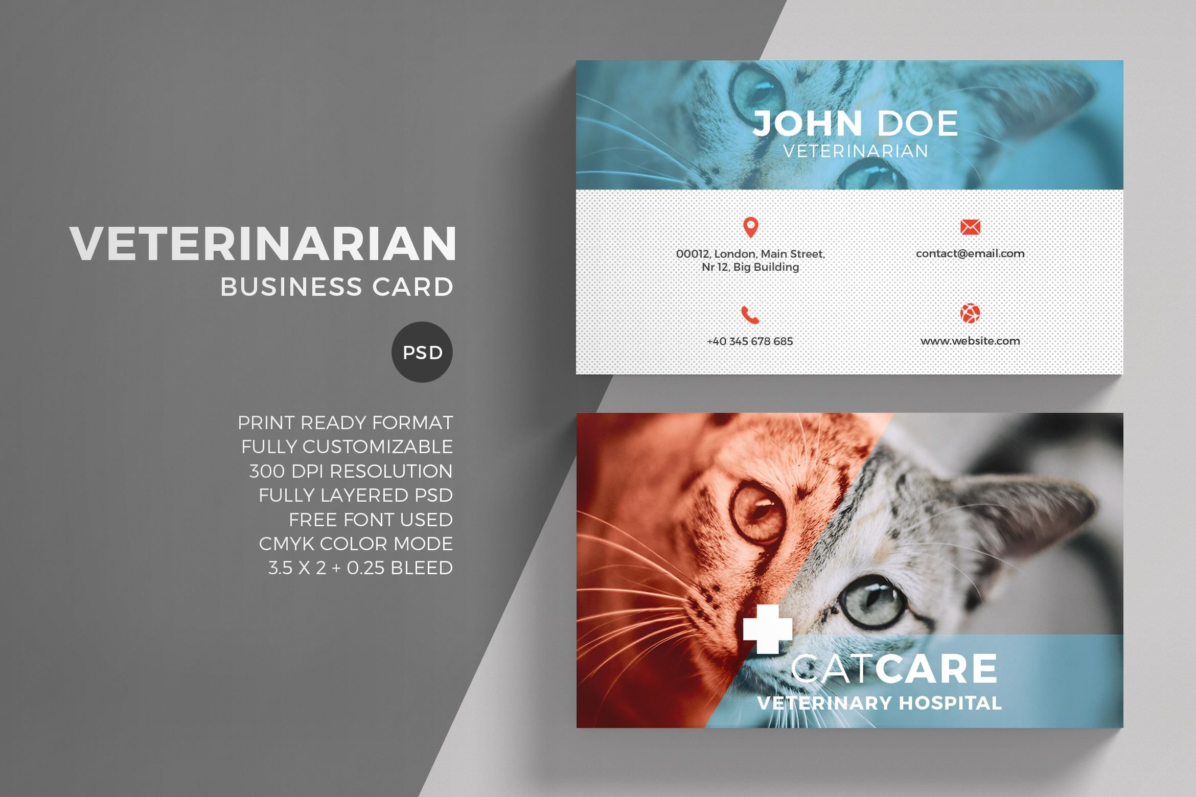 veterinarian business card template business card templates creative market. Black Bedroom Furniture Sets. Home Design Ideas