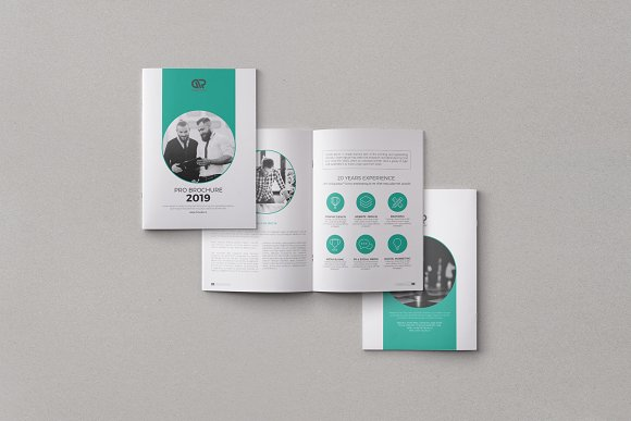 The Corporate Brochure