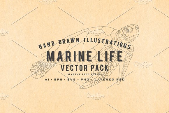 30 Hand Drawn Marine Life Vector Set