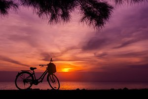 Ecology Traveling by Bike