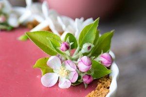 Spring Rhubarb Tart