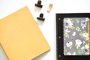 Black and Tan Stationary Photo
