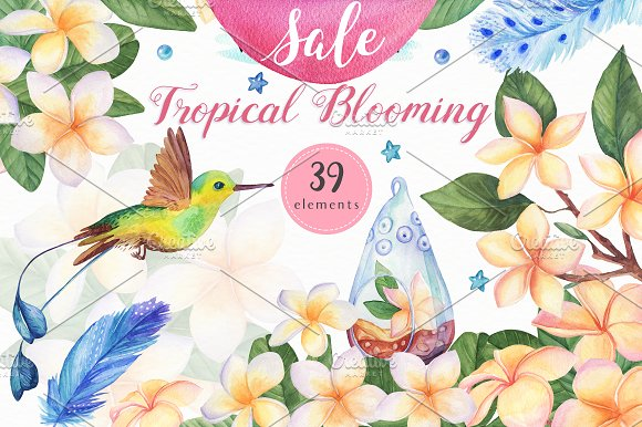 -60% OFF- Tropical Blooming