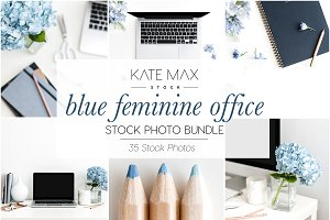 Blue Feminine Office Stock Bundle