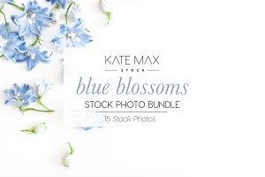 Blue Blossoms Stock Photo Bundle
