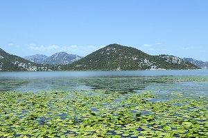 the lake .Montenegro