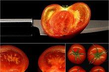 tomato collage 7.jpg