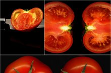tomato collage 10.jpg