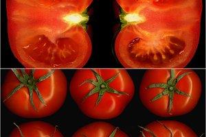 tomato collage 13.jpg
