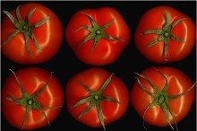 tomato collage 16.jpg