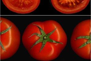 tomato collage 17.jpg