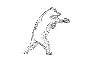Grizzly Bear Boxing Doodle Art