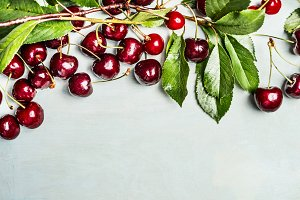 Red cherries on branches , top view