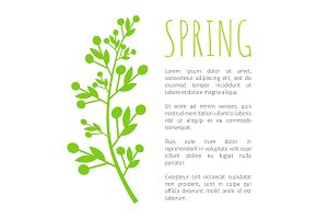 Spring and Weed Grass on Poster with Sample Text