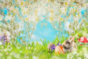 Easter rabbit in green grass