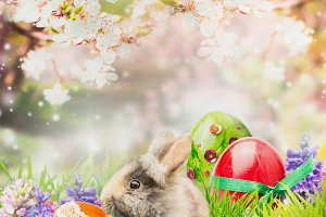 Little bunny with Easter eggs