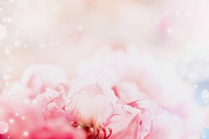 Floral romantic pastel background
