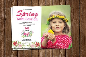 Spring Mini Session Template-V778