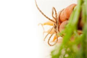 baby carrots 032.jpg