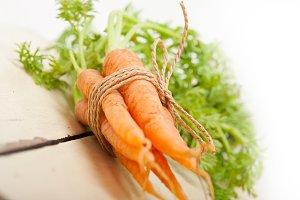 baby carrots 038.jpg