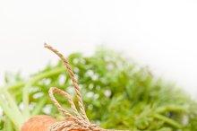 baby carrots 040.jpg