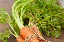 baby carrots 045.jpg