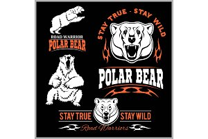 polar bears - vector set