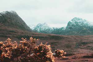 Spring Colors in the Mountains