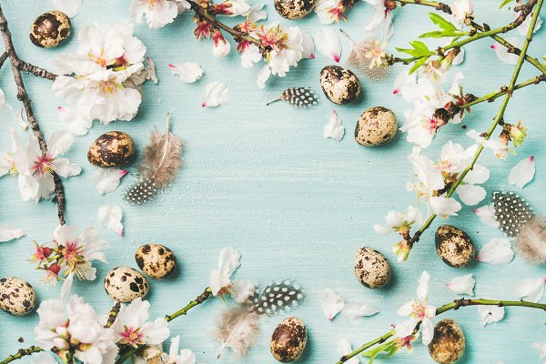 Easter background with eggs and Spr…