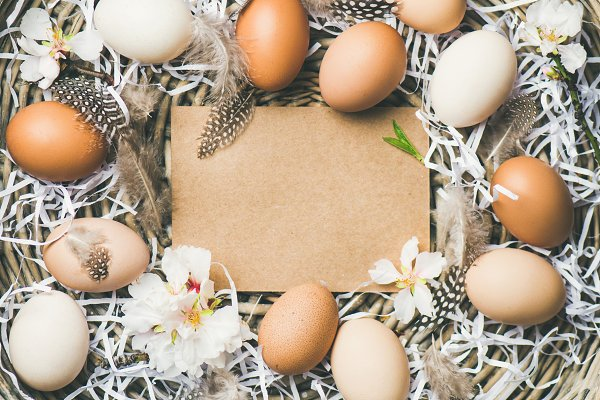 Easter background with eggs, flower…