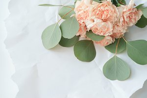 bouquet of delicate pink carnations