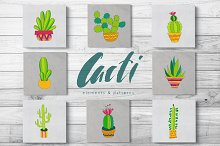 Cacti vector collection