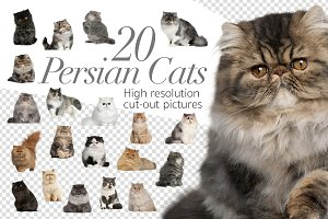20 Persian Cats - Cut-out Pictures