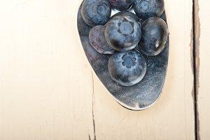 blueberry 014.jpg