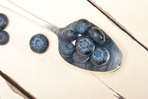 blueberry 018.jpg