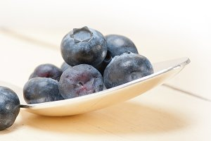 blueberry 022.jpg