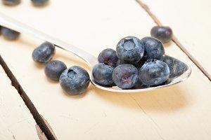 blueberry 025.jpg