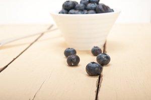 blueberry 035.jpg