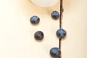 blueberry 036.jpg