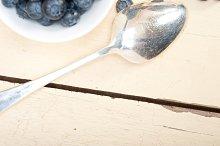 blueberry 049.jpg
