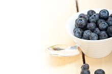 blueberry 057.jpg