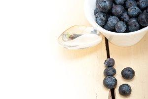 blueberry 058.jpg