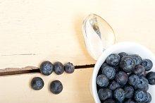 blueberry 059.jpg